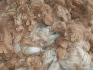 Felting Trivia – Did you know?