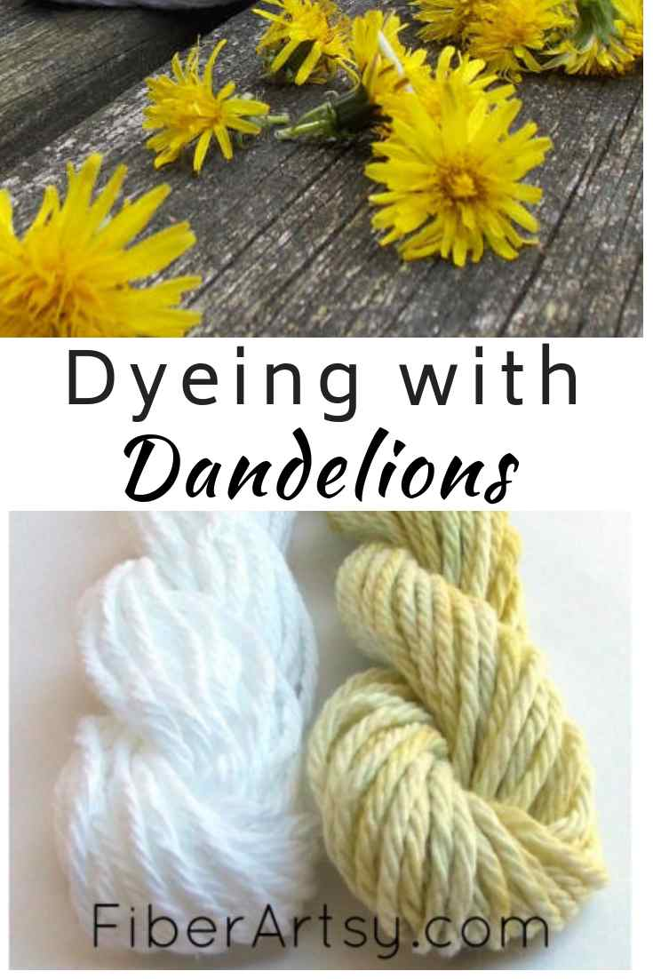 Dyeing with Dandelions. Natural Dyeing Technique using Dandelion Flowers