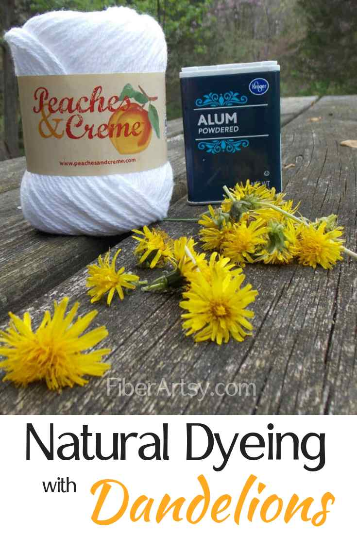 Dyeing Yarn or Fabric Yellow naturally using dandelion flowers.