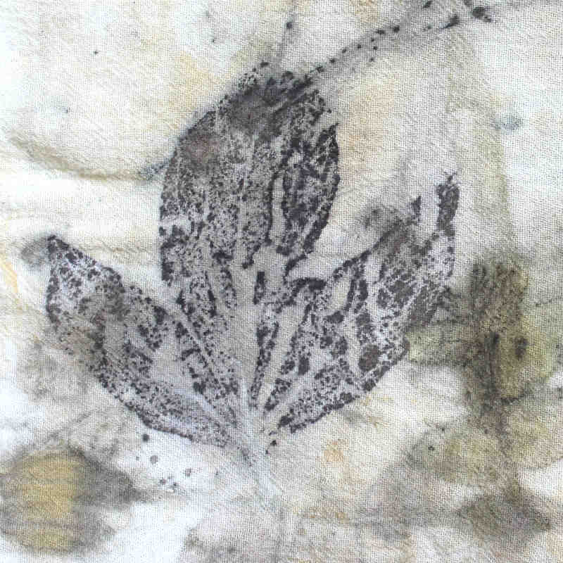Black Walnut Leaf printed on cotton