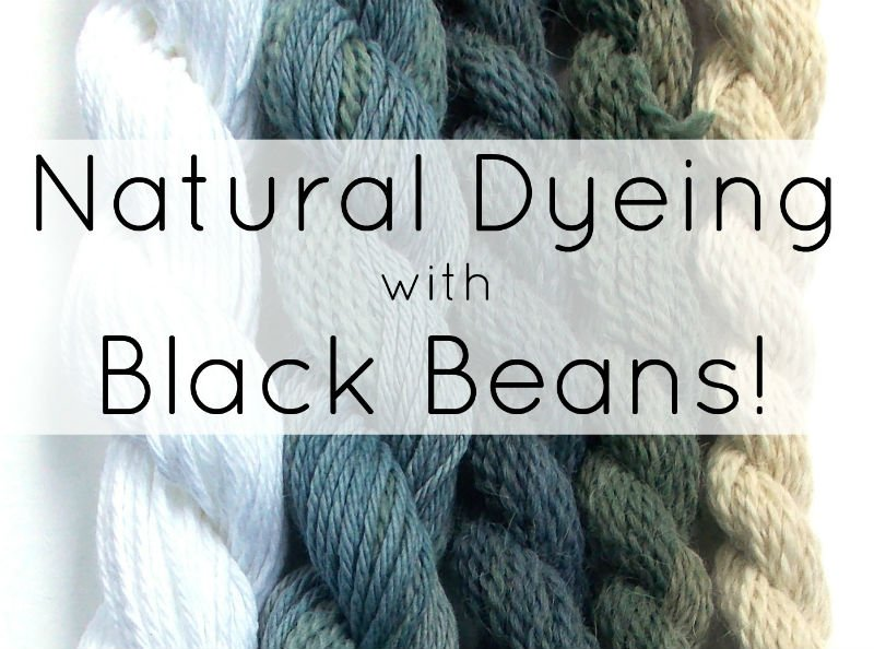Natural Dyeing with Black Beans, a FiberArtsy.com Tutorial