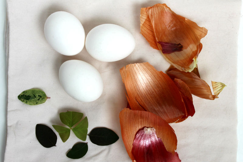 Supplies for naturally dyeing easter eggs with onion skins