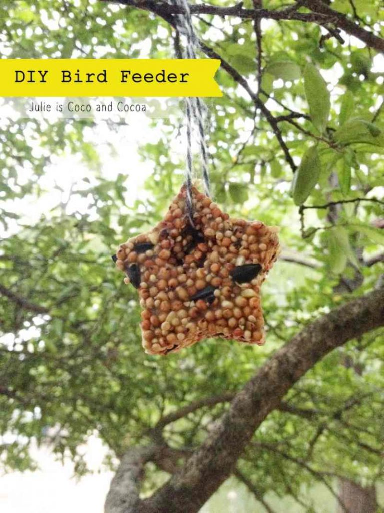 Craft ideas for kids at home - How to make a bird seed feeder