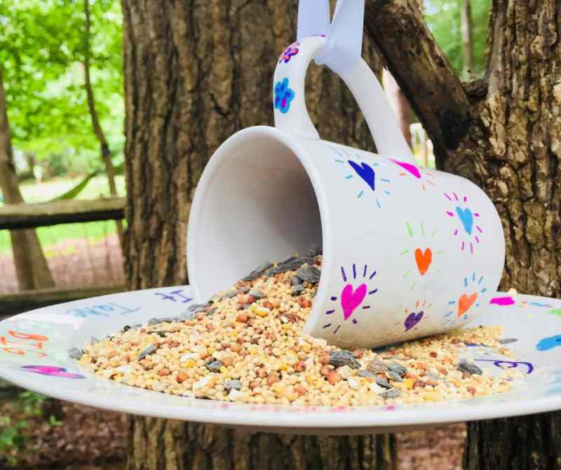 Bird Feeder Made with a Coffee Cup
